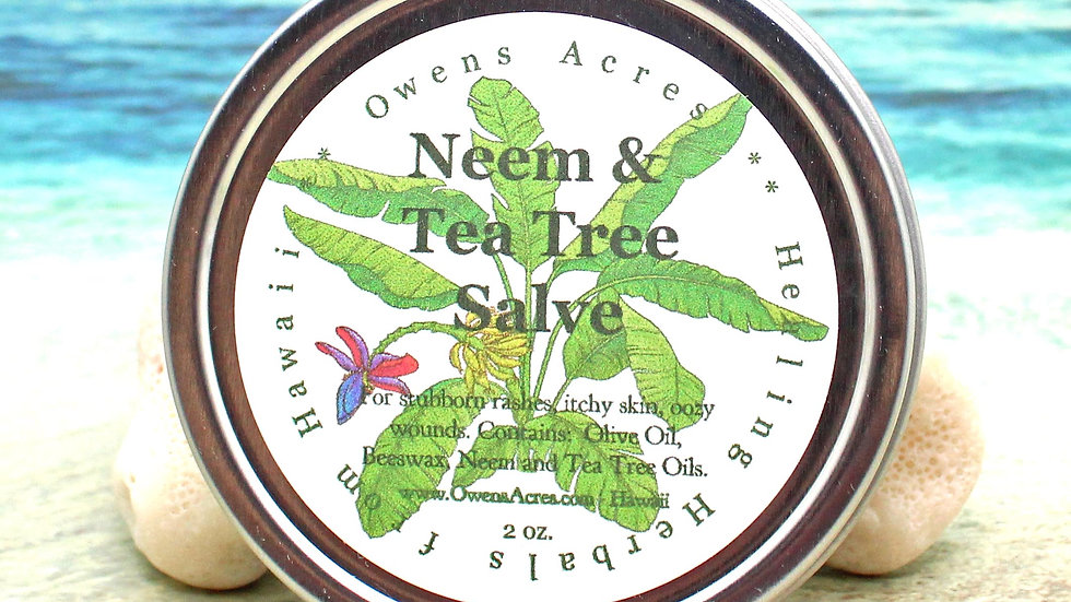 Neem and Tea Tree Antiseptic Salve for Skin Rashes and Itchy Skin