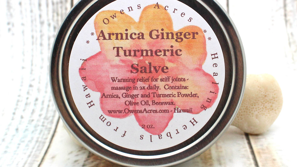 ARNICA Ginger Turmeric Salve / Herbal Salve for Stiff Joints / Arthritis Salve /