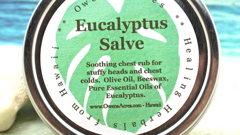 Eucalyptus Herbal Chest Rub Salve - Soothing Relief for Stuffy Heads