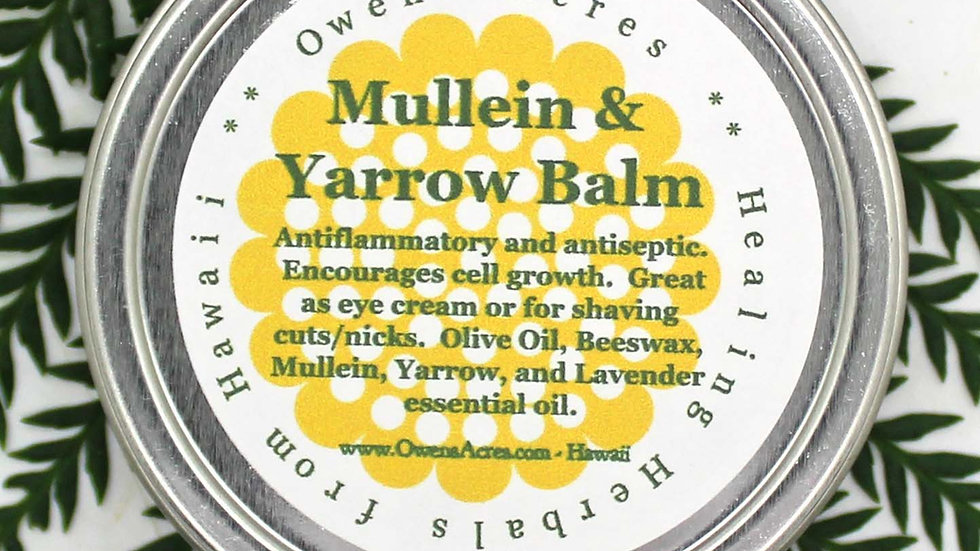 Mullein and Yarrow Salve - Anti-Inflammatory and Antiseptic