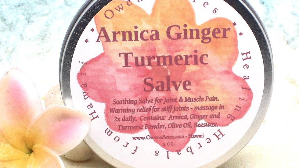 ARNICA Ginger Turmeric Salve / Herbal Salve for Stiff Joints / Arthritis Salve /