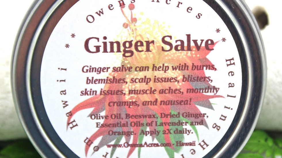 Ginger Salve - Soothes Burns, Headaches, Nausea, Blemishes, Joint Pain