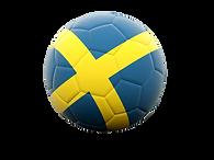 Svenska (Coming Soon)