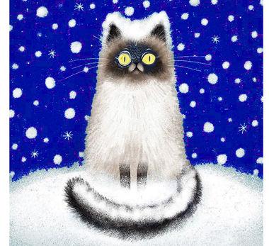 snow-cat_.jpg