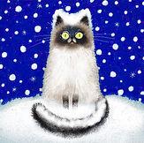 snow-cat.jpg
