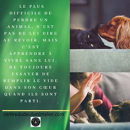 LE_PLUS_DIFFICILE_DE_PERDRE_UN_ANIMAL,_N
