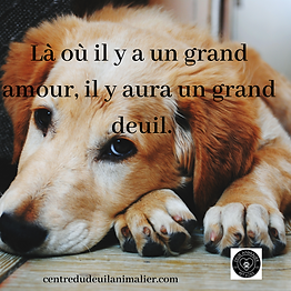 Là_où_il_y_a_un_grand_amour,_il_y_aura_u