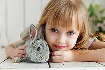 rabbit-3660673_640.jpg