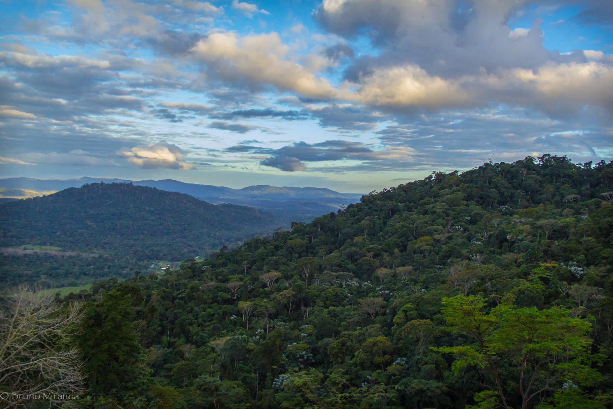 north Serra Bonita Reserve.jpg