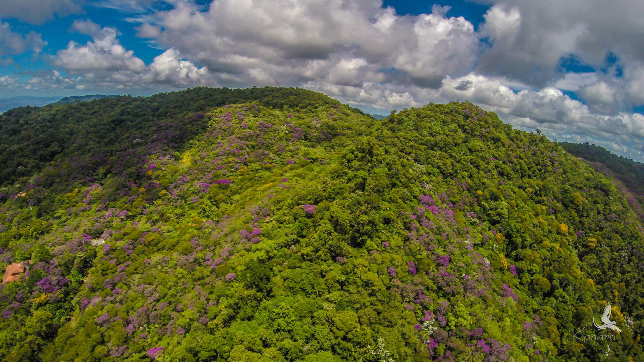 aerial photograph of the top of the mountain SBR.jpg