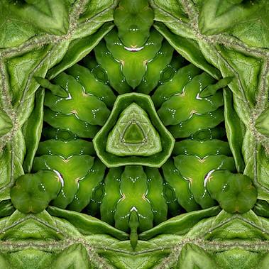 Kaléidoscope 2