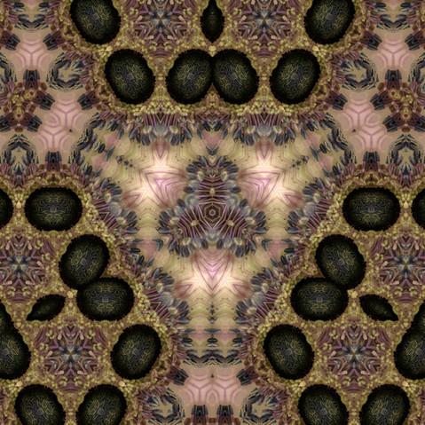 Kaléidoscope 3