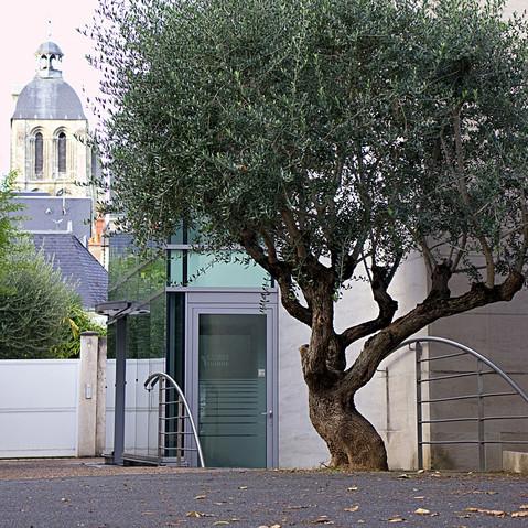 Rue de Clocheville, Tours, 2019
