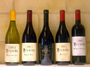 Picardy Wines