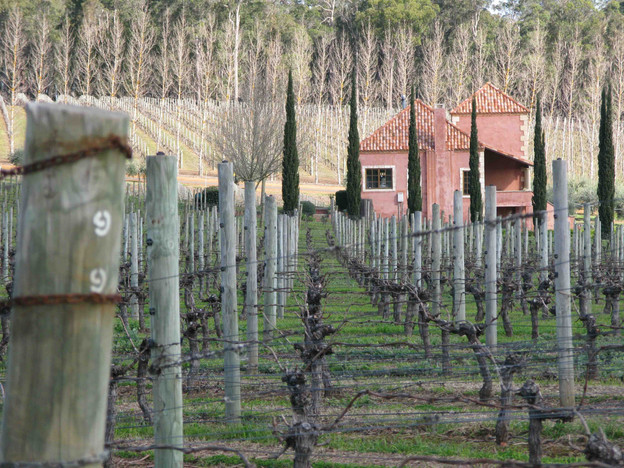 Picardy House after Vineyard Pruning