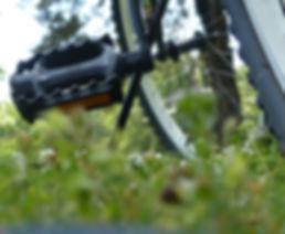 pyörä ja poljin.jpg