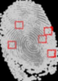 fingerprint-146242.png