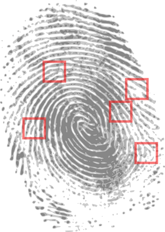 fingerprint-146242.png