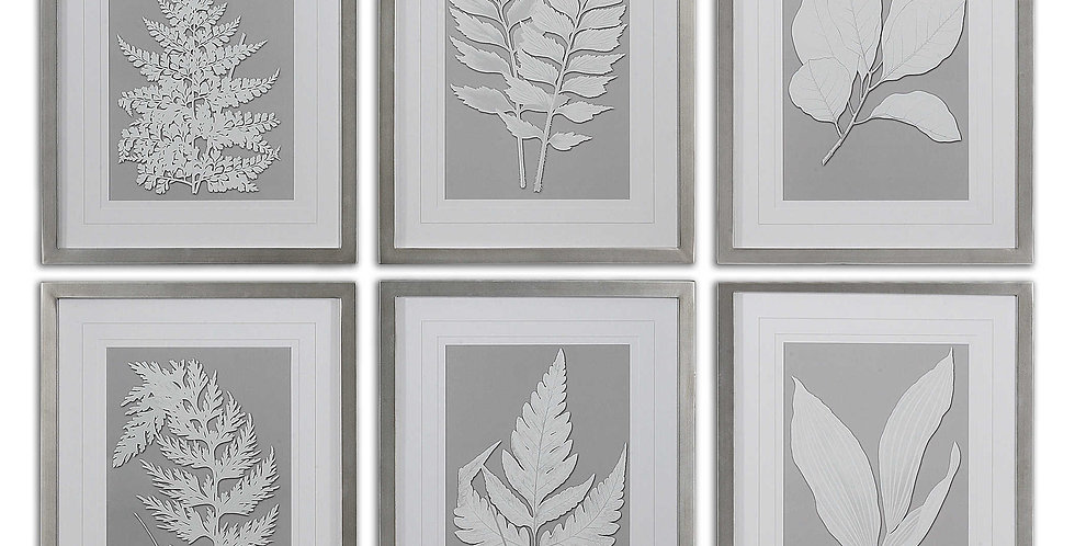 MOONLIGHT FERNS FRAMED PRINTS, S/6