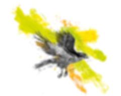 epervier_visu-only_WIX.jpg