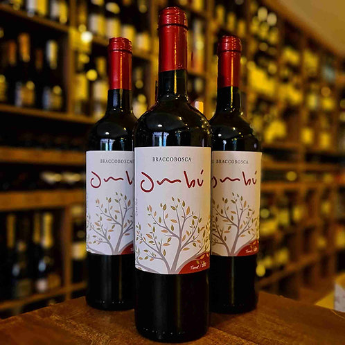 Vinho Tinto Uruguaio Ombú Tannat 750ml