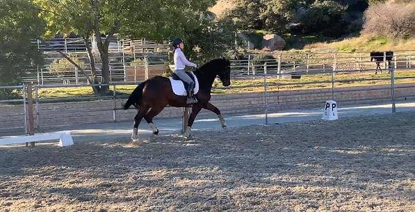 Skyke on horse.jpg