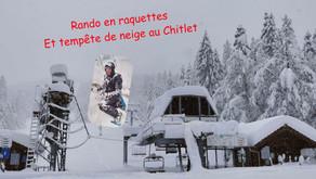 Hiver / Winter 2020-2021 - Vosges enneigées / Flacky Vosges