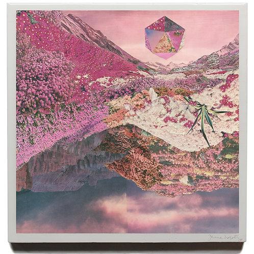 'Bloom' resined print