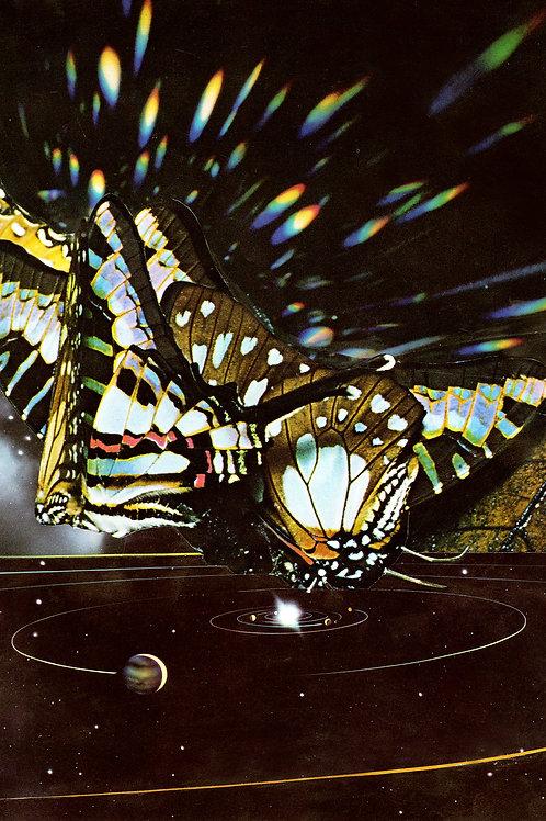 """'Butterfly Effect'  12 x 16"""""""