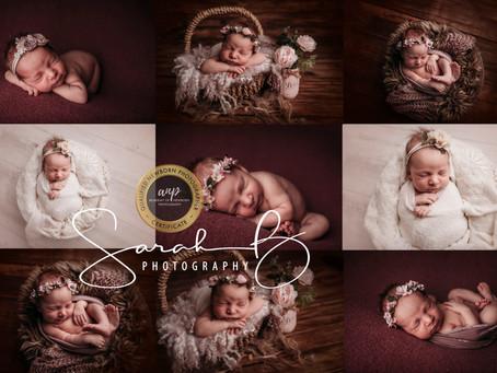 Brisbane Newborn Photographer Mini Sessions