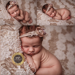 Mini Newborn Session Thornlands baby pho
