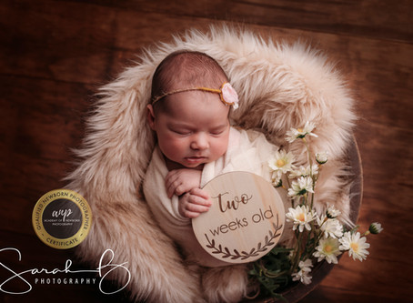 When to get your newborn babies photography done?