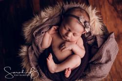 brisbane photographer sarah b photograph