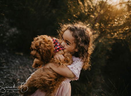 Brisbane Pet Puppy Photographer