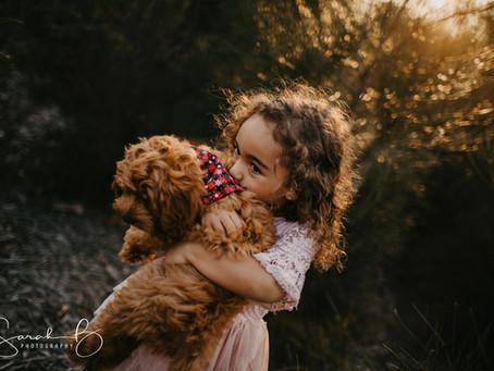 Brisbane Pet Puppy Photographer
