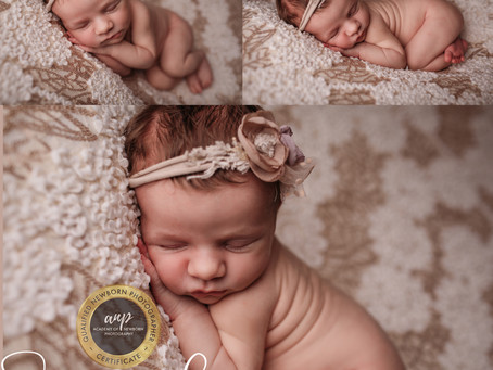 Possible My Favourite Newborn Shoot Ever