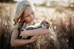 brisbane kitten and family shoot pets ph