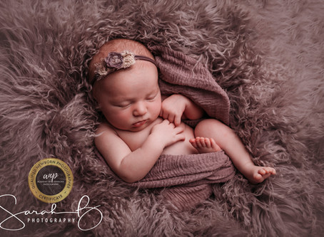 Mini Newborn Sessions