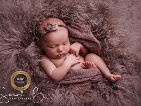 Mini Newborn Sessions