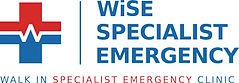 King's-Fest-Wise-Specialist-Emergency-Logo.jpg