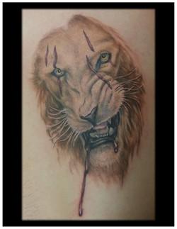 1c-lionscar