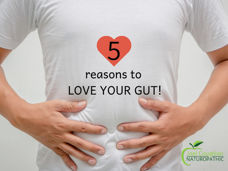 5 Reasons to Love Your Gut!