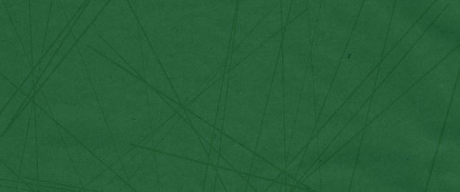 NOKINGS_WEBSITE_BACKGROUND_GREEN.jpg