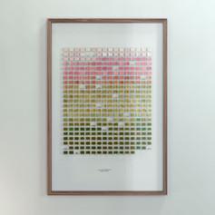 Resolution: 365 Days (Titanium White + Primary Red - Ochre Yellow + Sea Green)