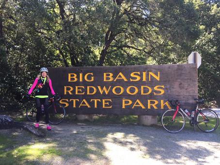 Boulder Creek-Big Basin Loop
