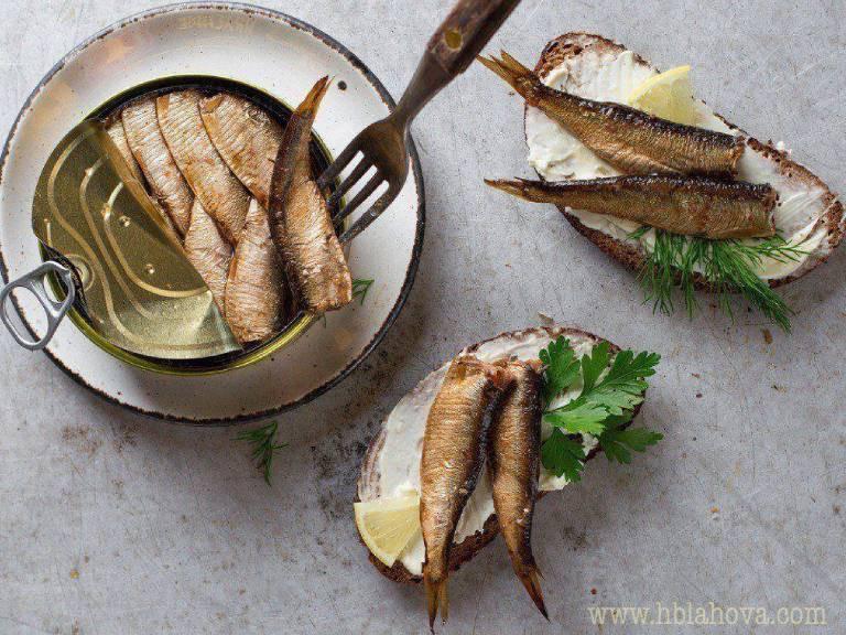Středomořské ryby obsahují často mikroplasty