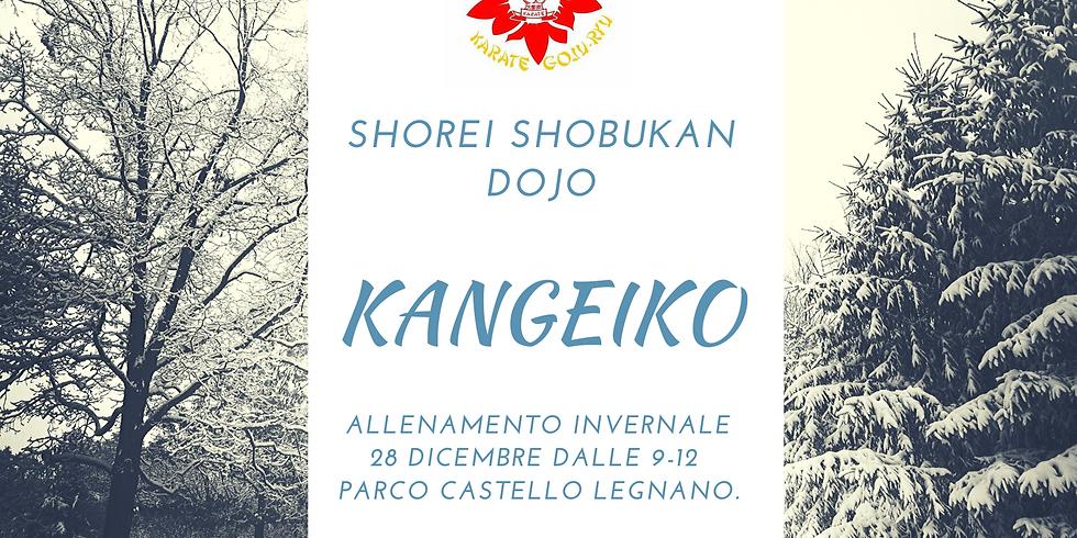 Kangeiko allenamento invernale