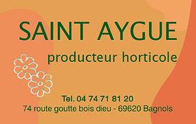 Saint Aygue.jpg