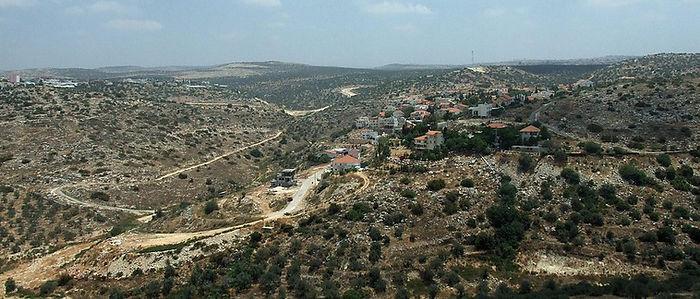 1024px-PikiWiki_Israel_2833_Etz-Efraim_-