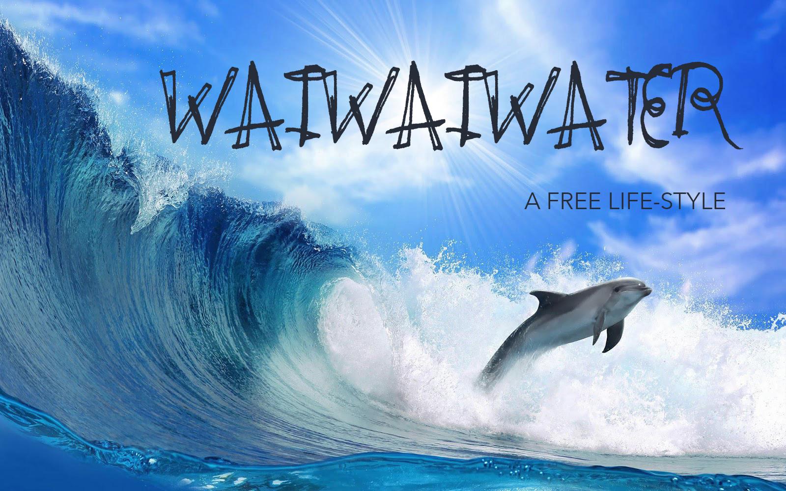 dolphinwavebanner